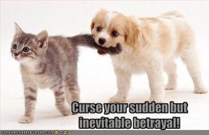 Betrayal_Kitt.jpg